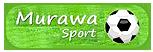 Renowacja trawiastych boisk piłkarskich Murawa-Sport